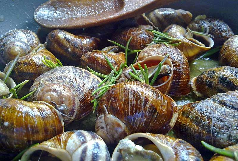 "Snails ""bourbouristoi"""